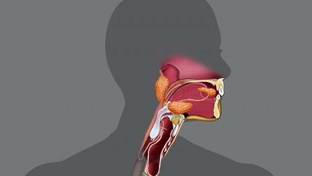 سلامت دهان و دندان و سیستم گوارش